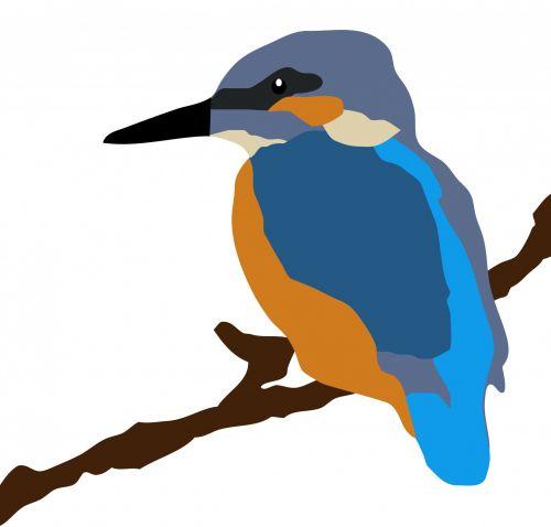 Kingfisher Bird On Branch