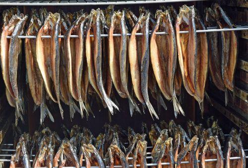 kippers herring smoked