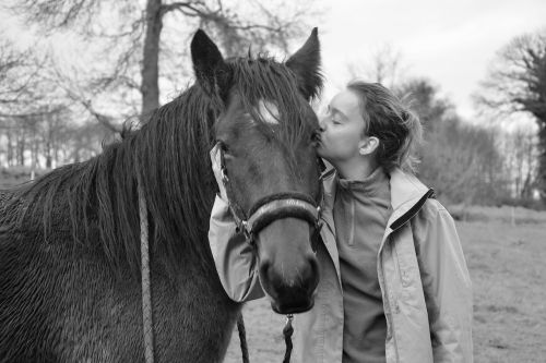 kisses kiss young girl horse