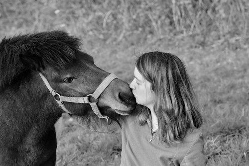 kisses  kiss  girl pony