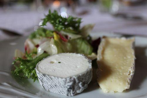 kitchen tasting cheese