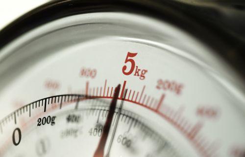 kitchen scale weight