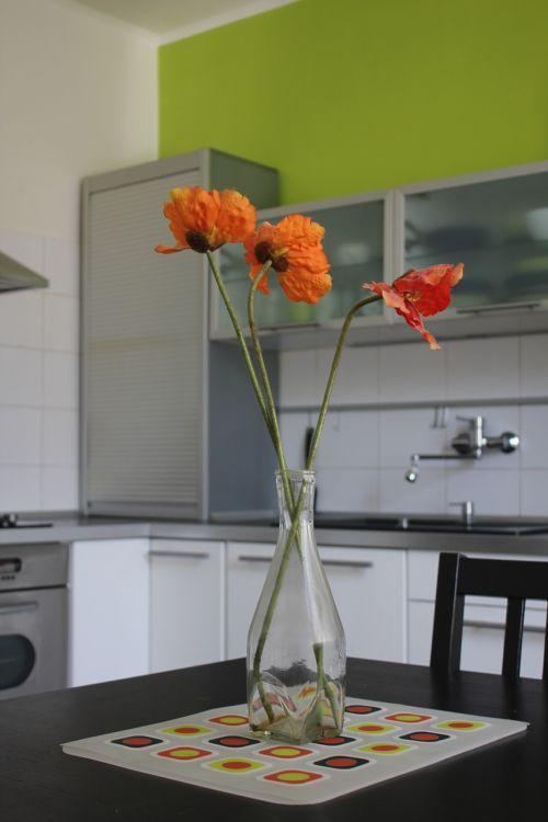 kitchen housing kvetina