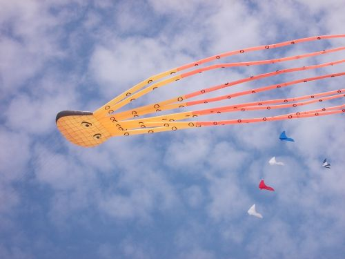 kite wind bray-dunes