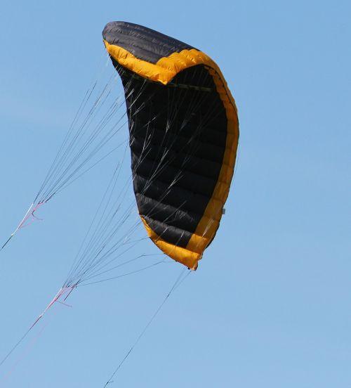 kite dragon fly