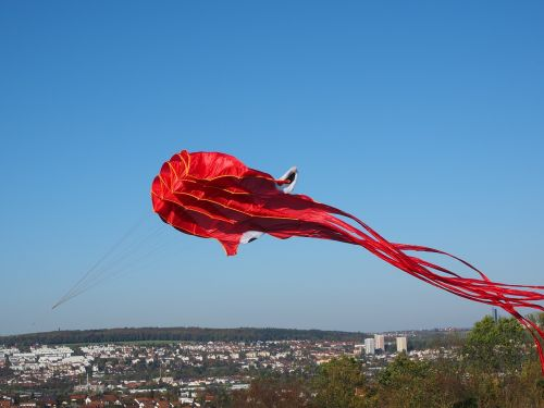 kite flying dragons octopus
