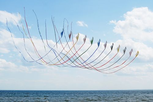 kites sky summer