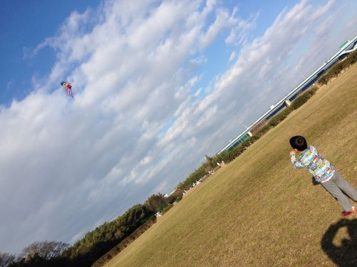 kites kite kite kite lawn