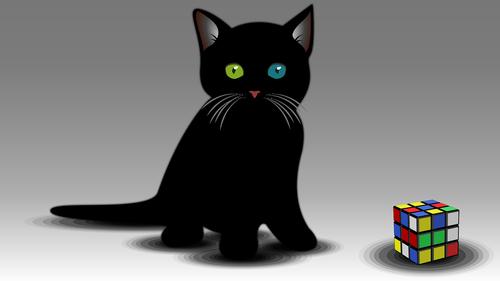 kitty  kitten  silhouette