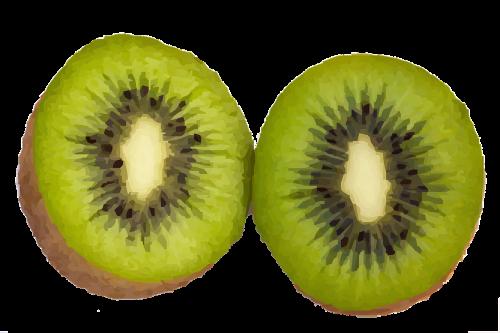 kiwi fruit food
