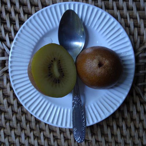 Kiwi Fruit Cut