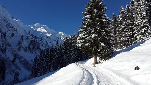 kleinwalsertal winter allgäu