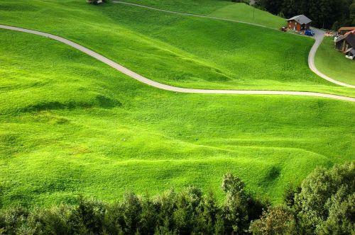 klewenalp meadow mountain farm