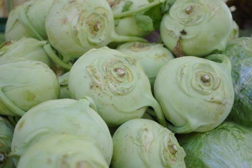 kohlrabi vegetables brassica oleracea var