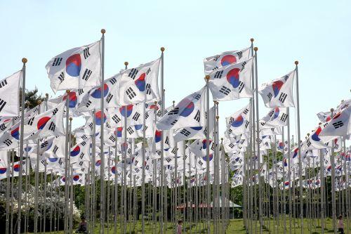 korean flags flags field