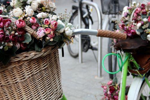 krakow flowers bicycle