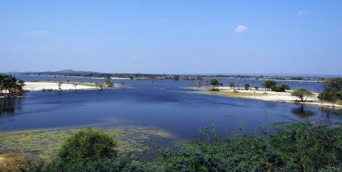 krishna river backwaters