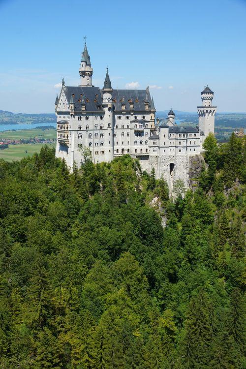 kristin castle forest