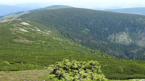 krkonoše giant mountains  mountains  nature