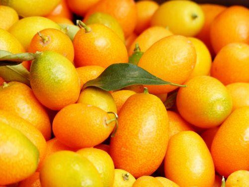 kumquats fruits fruit