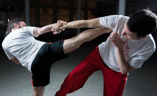 kung fu fighting martial arts