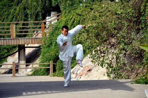 Kung Fu Pose (a)