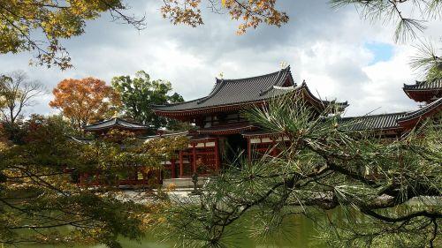 kyoto travel byodoin