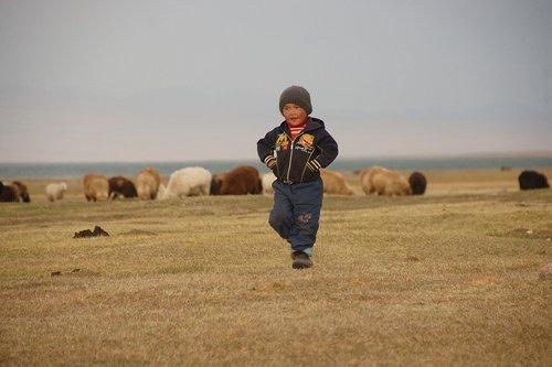 kyrgyzstan  song kul  landscape