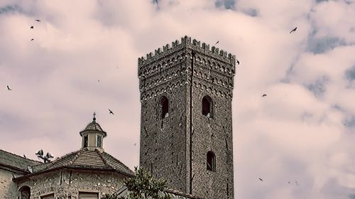 The Tower And The Swallows
