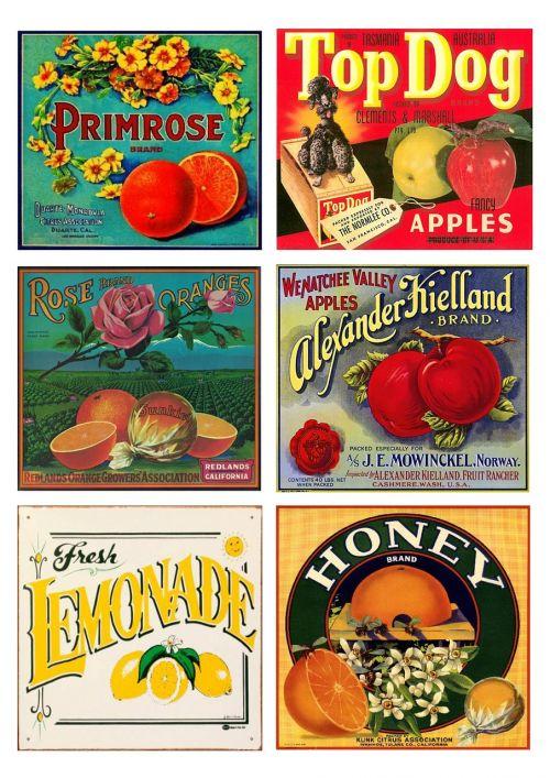 labels vintage fruit