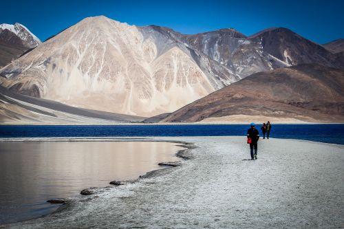 ladakh traveler travel