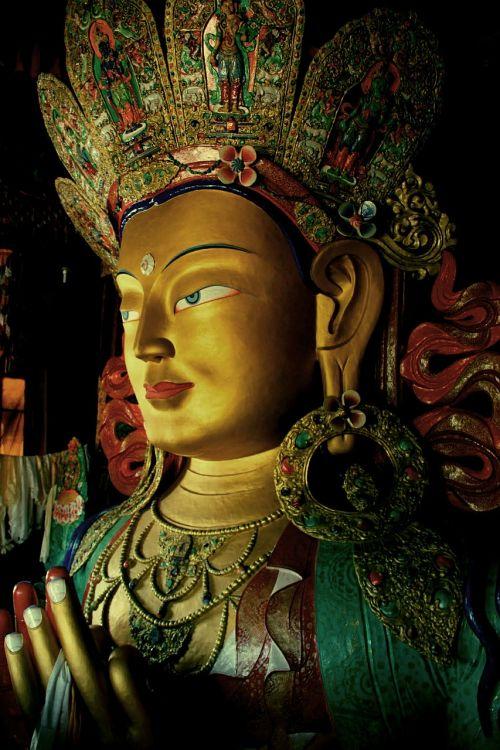 ladakh tibet india
