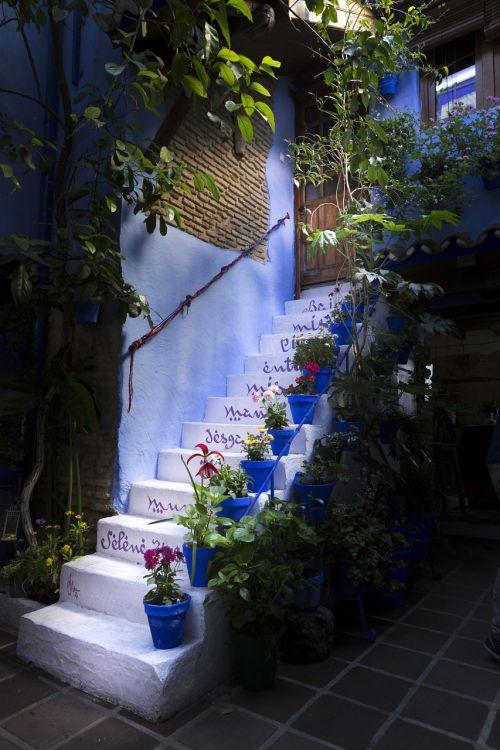 ladder plants patios de córdoba