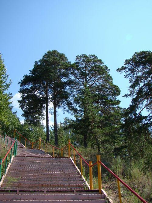 ladder stage railing
