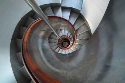 ladder spiral snail