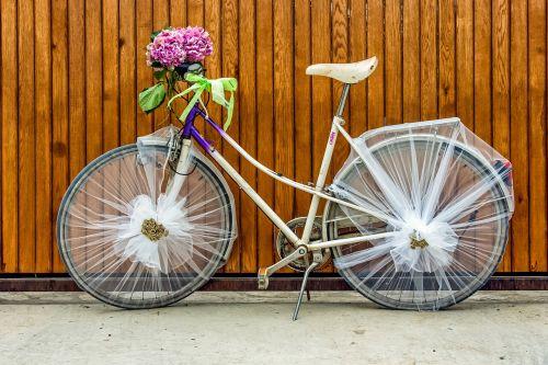 ladies bicycle girl bicycle bicycle