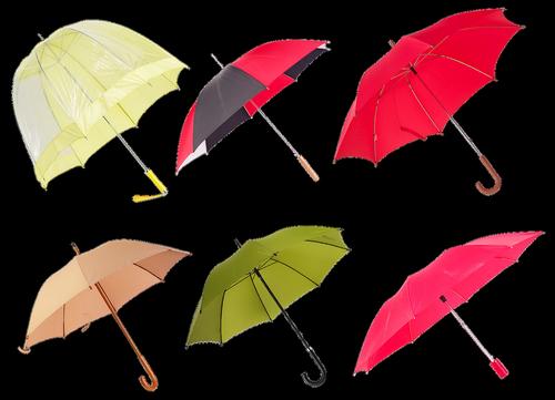 ladies ' umbrella  umbrella  rain