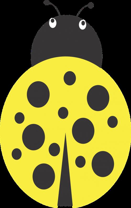 lady bug yellow