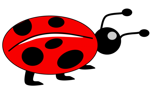 lady bug kids animal