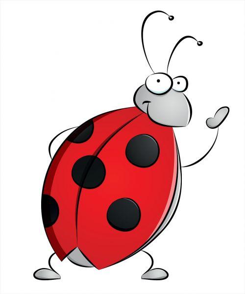 ladybug dots insect