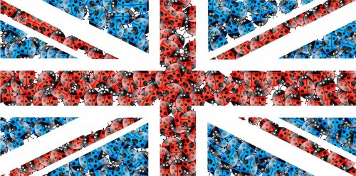 Ladybug Union Jack