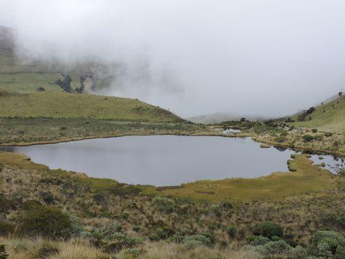 laguna cold moor