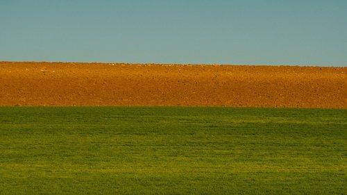 laid  plow  field