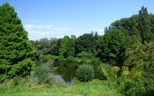 lake pond green