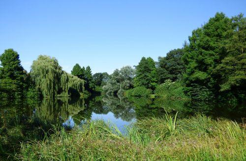 lake pond mirroring