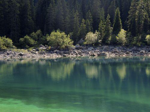 lake bergsee green