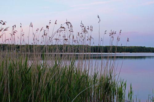 lake mecklenburg western pomerania labusseee