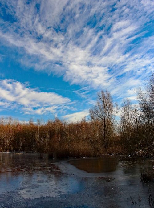 ežeras,sušaldyta,žiema,ledas,kraštovaizdis,metų laikas,užšalęs ežeras,ledo danga,veidrodis,mėlynas dangus,nendrė,ežeras,bankas,niederzier