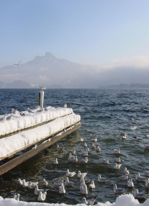 lake mondsee winter