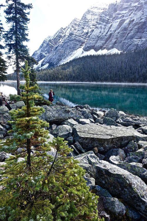 lake mist wilderness